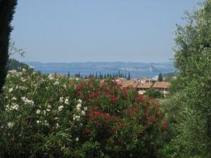 Panoramablick Gardasee