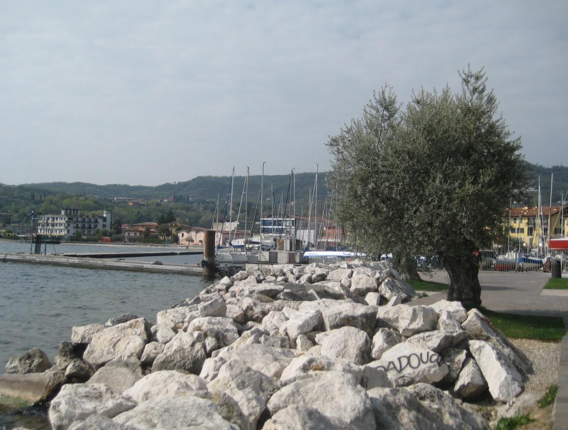 Hafen am Gardasee