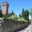 Burgen und Natur am Gardasee erleben