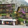 Blumen am Lago di Garda