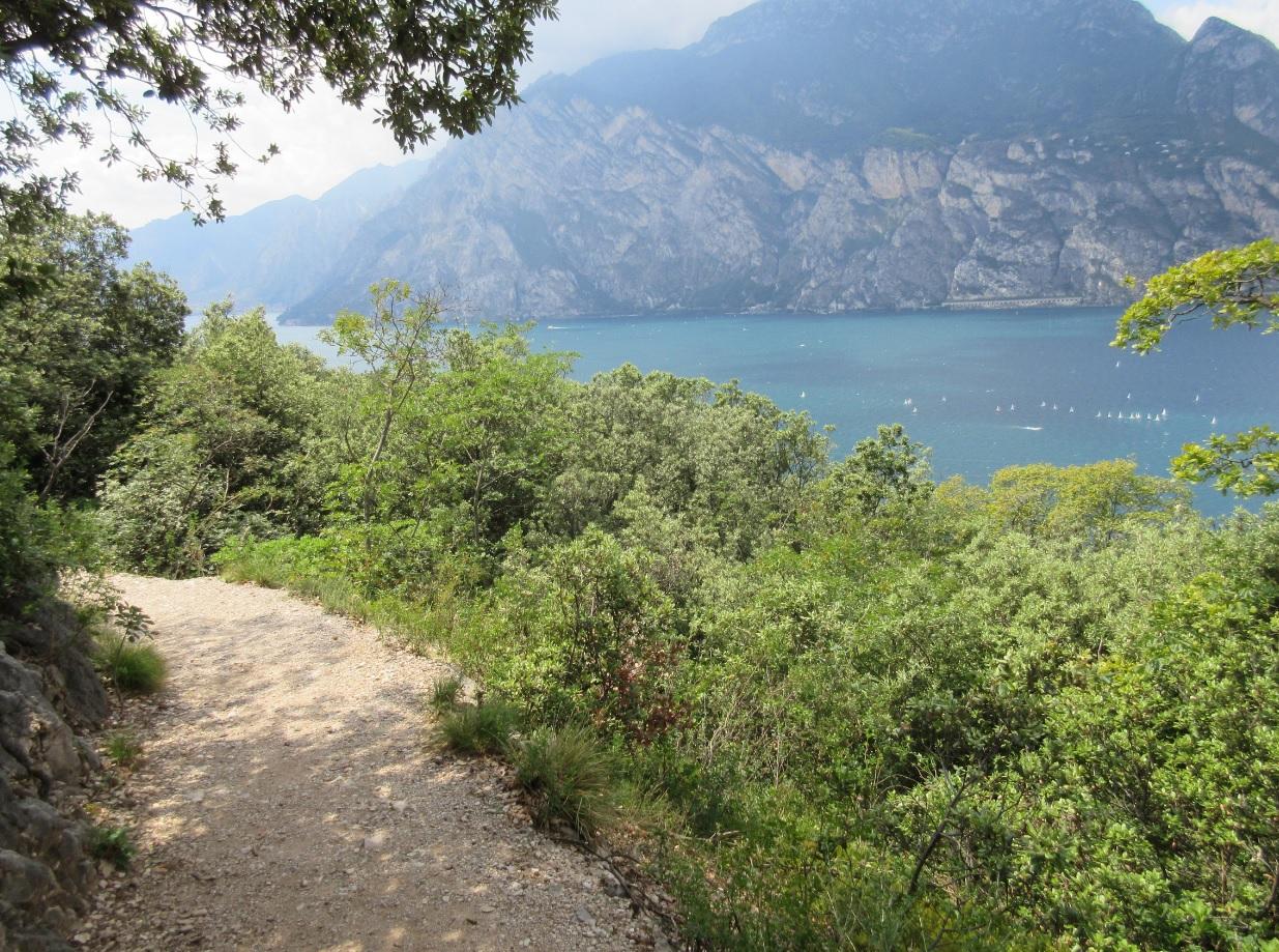 Panoramablick am Gardasee
